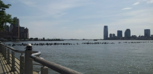 nyriverview